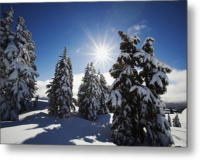 Oregon Cascades, Oregon, United States Metal Print by Craig Tuttle