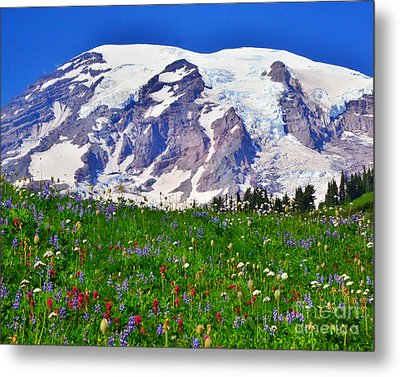 Metal Print featuring the photograph #73 Blooms At Paradise by Jack Moskovita