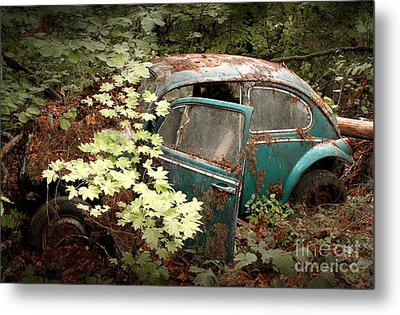A '65 Bug In The Overgrowth Metal Print by Michael David Sorensen