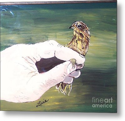A Bird In Hand Metal Print by Lucia Grilletto