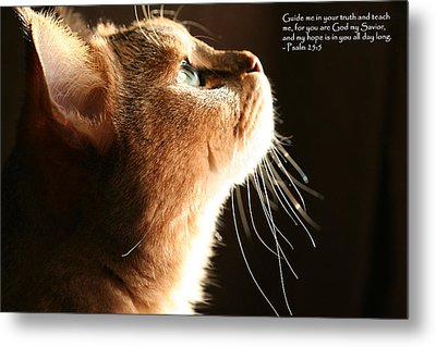 A Cat Prayer Metal Print by Wendi Matson