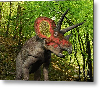 A Colorful Triceratops Wanders Metal Print by Walter Myers