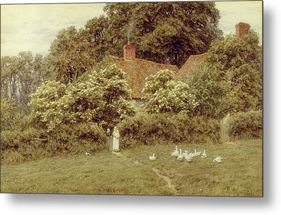 A Cottage At Farringford Isle Of Wight Metal Print by Helen Allingham