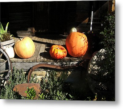 Metal Print featuring the photograph A Country Thanksgiving by George Bostian