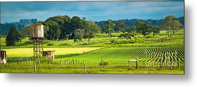 A Day In The Country Metal Print by Melle Varoy
