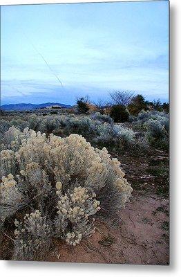 A Desert View After Sunset Metal Print