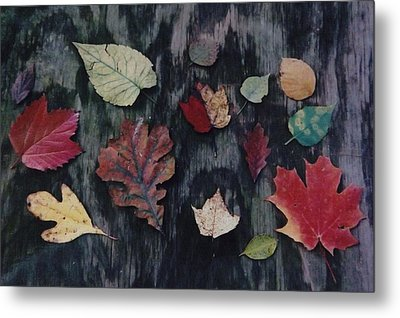 Metal Print featuring the photograph A Fall Of Color by Gerald Strine