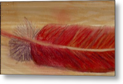 A Feather I Found Metal Print by Anne-Elizabeth Whiteway
