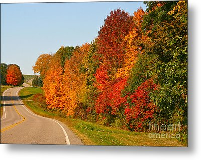 Metal Print featuring the photograph A Fine Fall Day by Joan McArthur