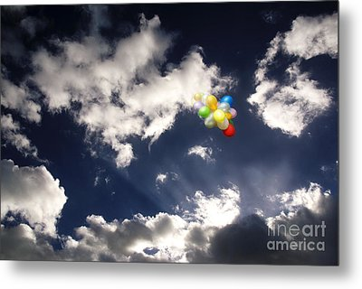 Metal Print featuring the digital art A Flight From Drama by Rosa Cobos