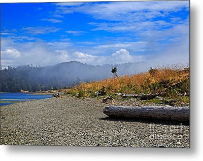 A Foggy Morning At Whiffin Spit Metal Print