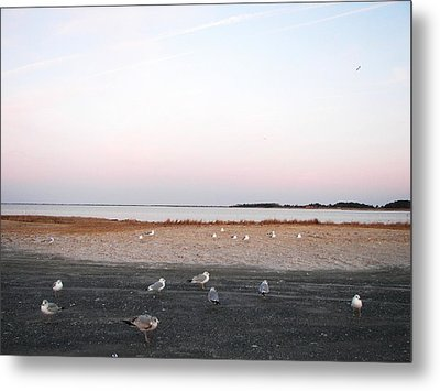 Metal Print featuring the photograph A Gathering On Rehoboth Bay by Pamela Hyde Wilson