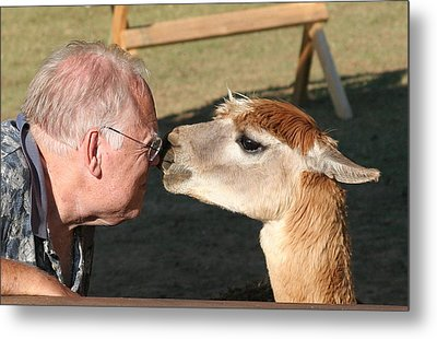 Metal Print featuring the photograph A Kiss On The Nose by Paula Tohline Calhoun