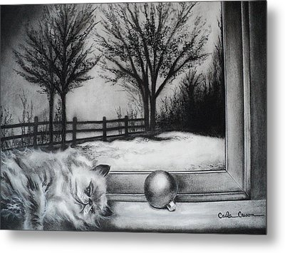 A Lazy Winter Day Metal Print