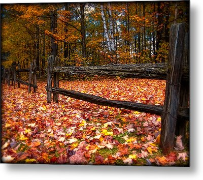 A Log Fence In A Carpet Of Fall Leaves Metal Print by Chantal PhotoPix
