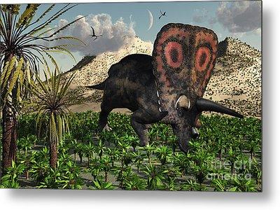 A Lone Torosaurus Dinosaur Feeding Metal Print by Mark Stevenson