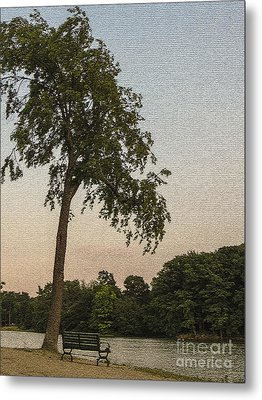 A Lonely Park Bench Metal Print by Darleen Stry