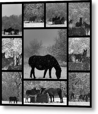 A Long Winter Metal Print by Christy Leigh