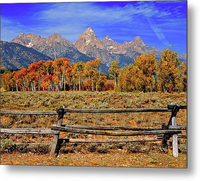 A Moment In Wyoming In Autumn Metal Print by Jeff R Clow
