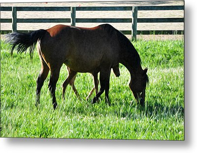 A Mother And Little One Metal Print by Bill Cannon