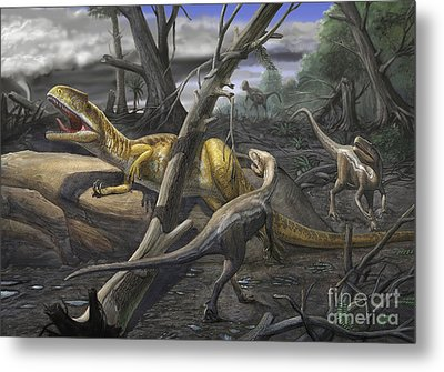 A Neovenator Salerii Is Approached Metal Print by Sergey Krasovskiy
