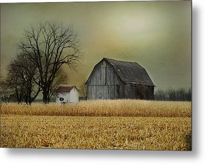 Metal Print featuring the photograph A New Dawn by Mary Timman
