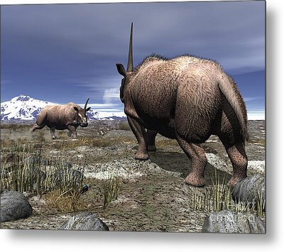 A Pair Of Male Elasmotherium Confront Metal Print by Walter Myers