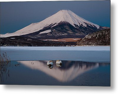 A Pair Of Mute Swans In Lake Kawaguchi In The Reflection Of Mt Fuji, Japan Metal Print by Mint Images/ Art Wolfe