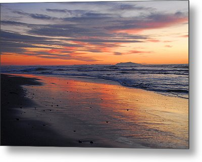 Metal Print featuring the photograph A Passion For Purple by Lynn Bauer