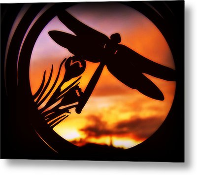 A Peaceful Dragonfly Sunset Metal Print by Cindy Wright