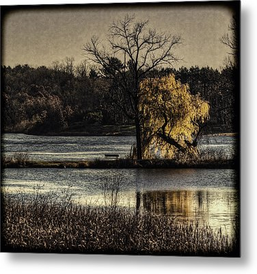 A Place To Think Metal Print by Thomas Young