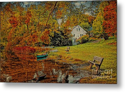 A Pond View Metal Print by Gina Cormier