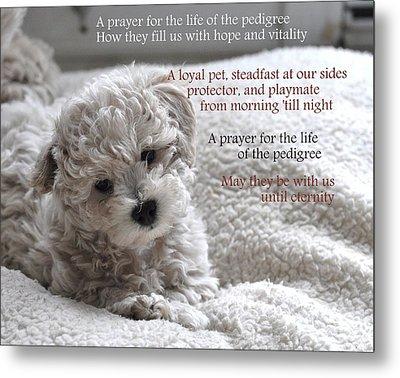 A Puppy's Prayer Metal Print