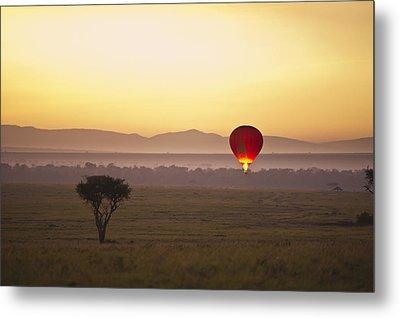 A Red Hot Air Balloon Takes Flight Metal Print by David DuChemin
