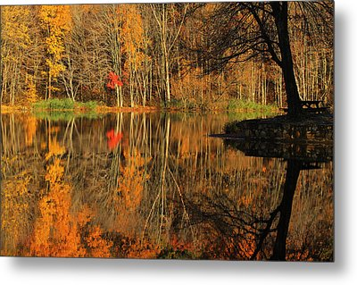 A Reflection Of October Metal Print by Karol Livote