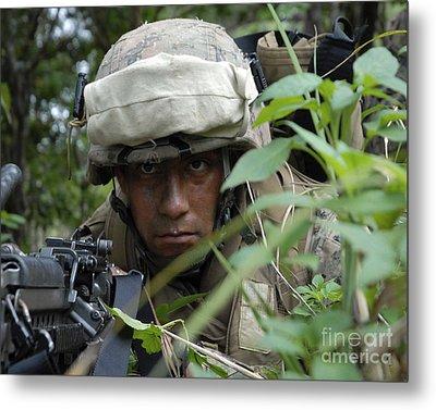A Rifleman Conceals Himself Metal Print by Stocktrek Images