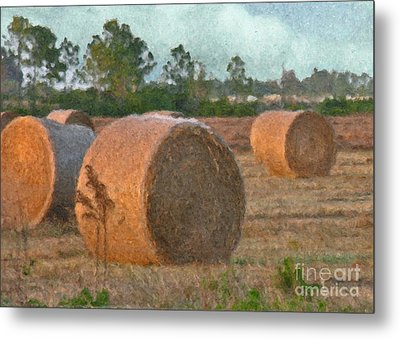 A Roll In The Hay Metal Print by Peggy Starks