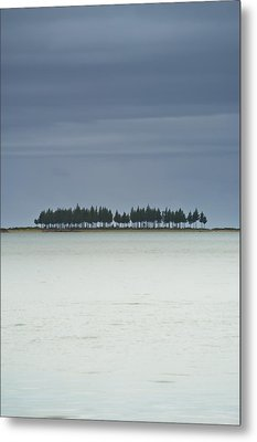 A Row Of Trees Along The Coast Farewell Metal Print by David DuChemin