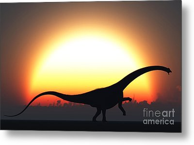 A Silhouetted Diplodocus Dinosaur Takes Metal Print by Mark Stevenson