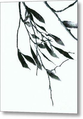 A Single Branch Metal Print by Ann Powell