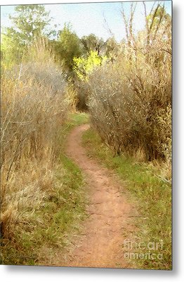 A Single Path Metal Print by Cristophers Dream Artistry