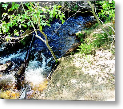 A Small Creek Metal Print