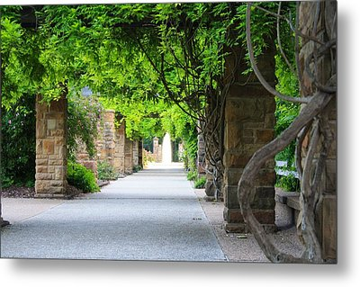 Metal Print featuring the photograph A Stroll Under The Vines by Lynnette Johns