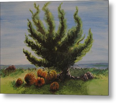 A Sunny Day At The Bay Of Pumpkins Metal Print
