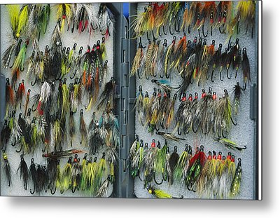 A Tackle Box Full Of Colorful Flies Metal Print by Bill Curtsinger