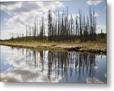Metal Print featuring the photograph A Tranquil River With A Reflection by Susan Dykstra