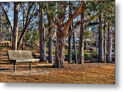 A Walk In The Park Metal Print by Doug Long