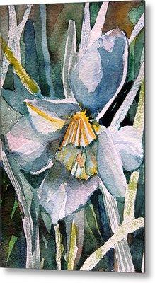 A Weepy Daffodil Metal Print by Mindy Newman