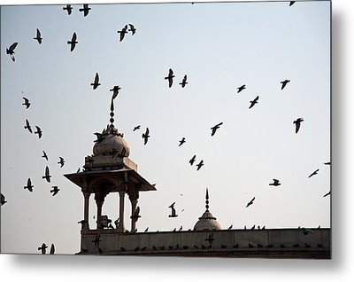A Whole Flock Of Pigeons On The Top Of The Ramparts Of The Red Fort In New Delhi Metal Print by Ashish Agarwal