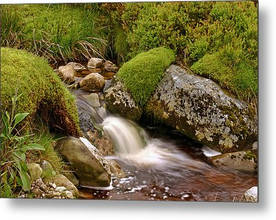 A Wicklow Stream Metal Print by Martina Fagan